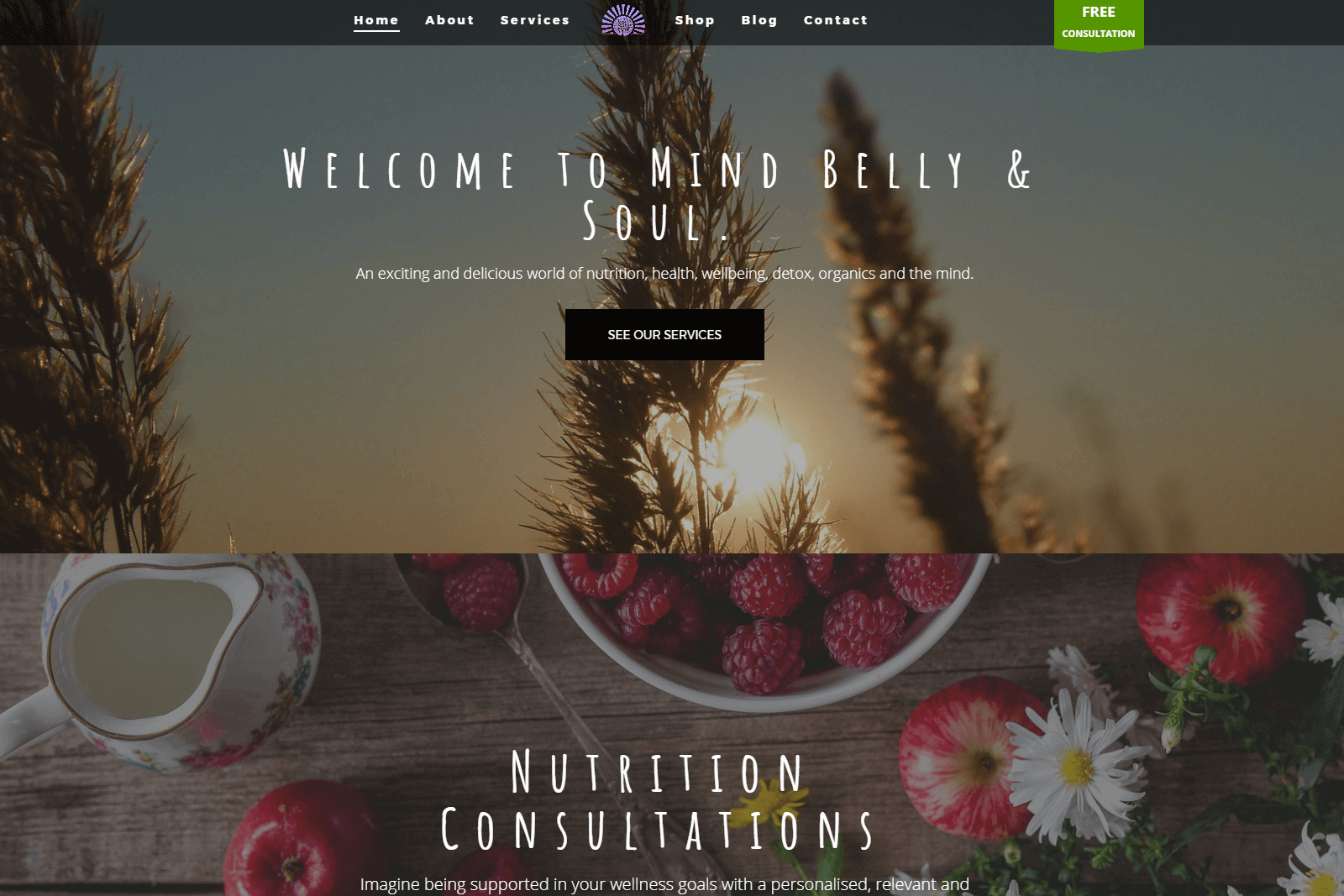 Mind Belly Soul Website Portfolio